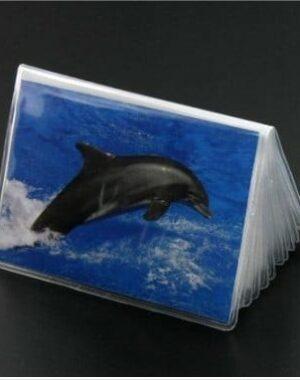 recharge plastique porte cartes fidélités carte visite